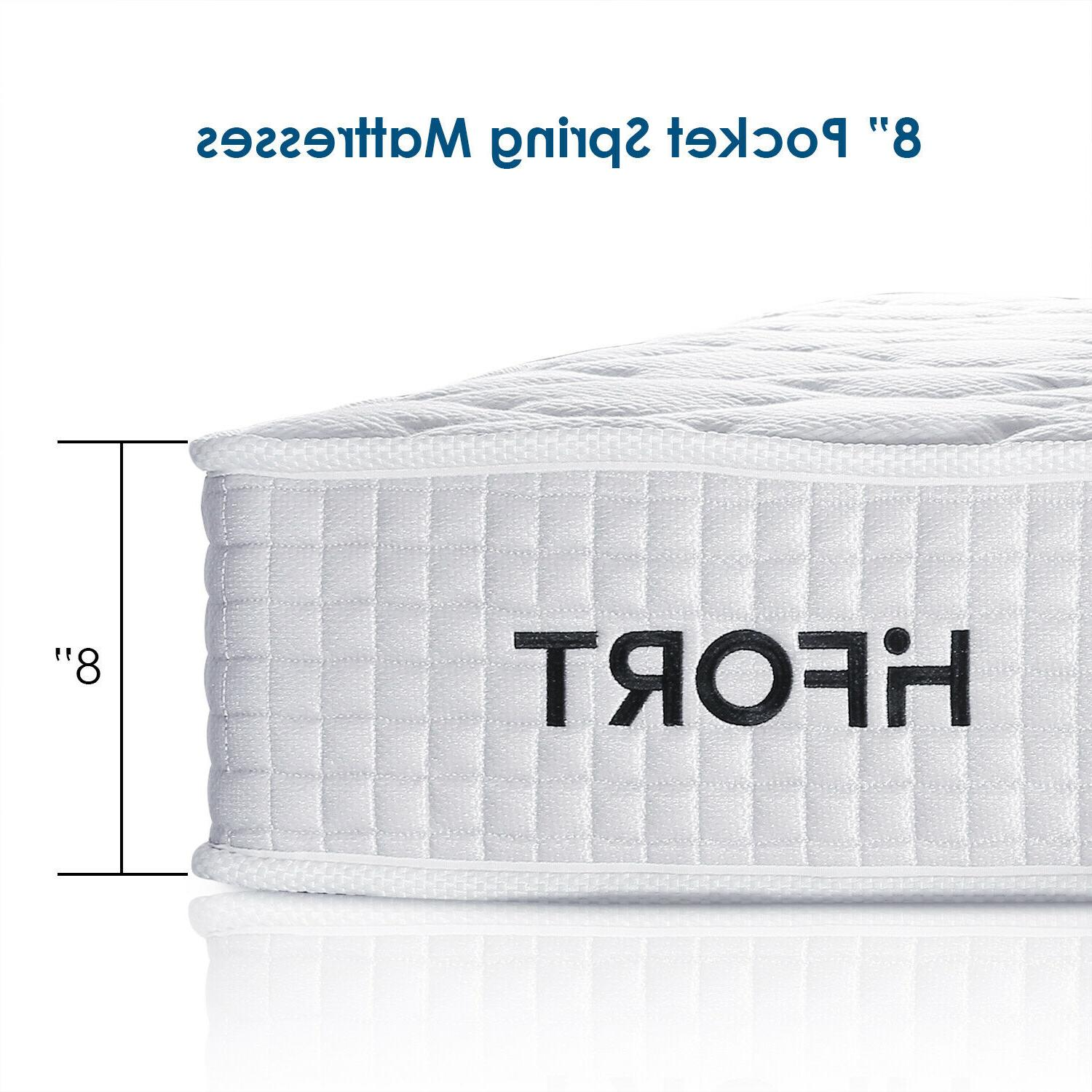8 Inch Mattress Coil Spring Bed
